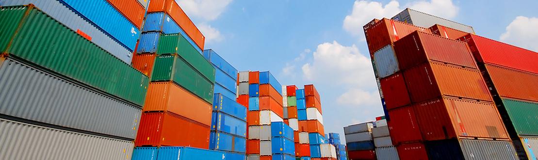 import export training